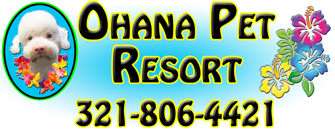 Ohana Pet Resort, Play All Day, Rest All Night, Go Home Happy